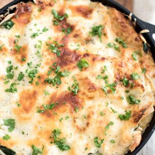 Chicken Alfredo Skillet Lasagna